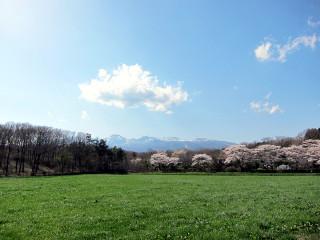 Sakuranooka_l