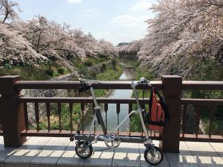 Yamazakigawa2_l